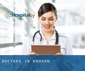 Doctors in Wahkon